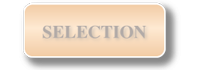 Go to selection page